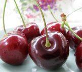 Chocolate Chia Cherry Protein Shake